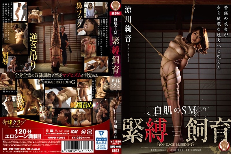 [HMPD-10056] Suzukawa Ayane 白肌のSM緊縛飼育 Nose Hook 120分 女優 Golden Showers Kitan Kurabu
